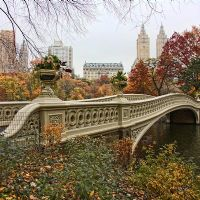 Usa New York Central Park bow bridge
